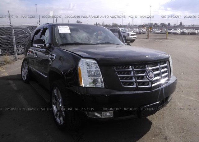 Inventory #290965595 2011 Cadillac ESCALADE