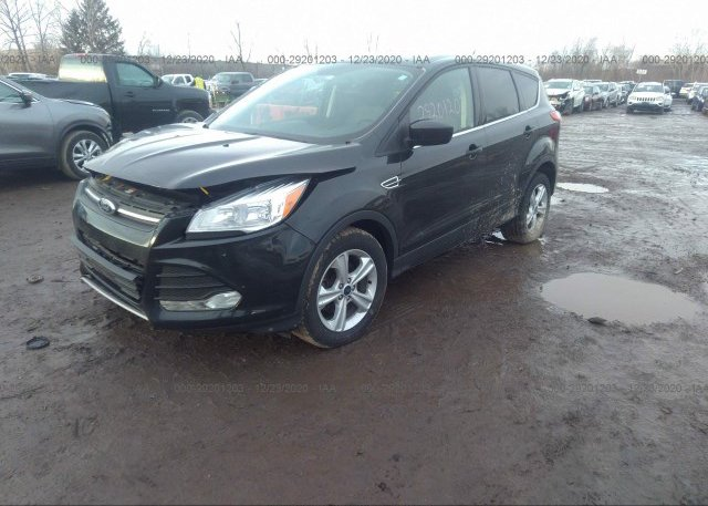 из сша 2015 FORD ESCAPE 1FMCU0GX7FUC24125