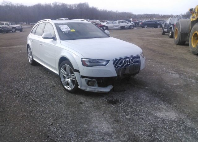 Inventory #476034181 2013 AUDI A4 ALLROAD