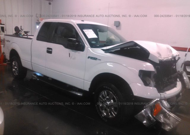 Inventory #826697203 2009 FORD F150