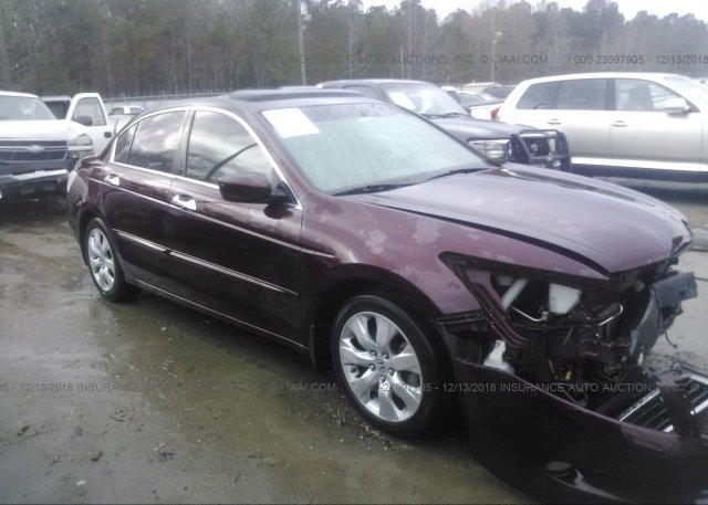 Inventory #523248814 2009 Honda ACCORD