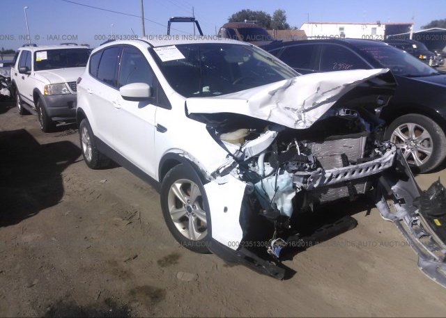 Inventory #277553460 2014 FORD ESCAPE