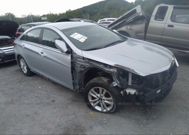 Inventory #791015862 2014 Hyundai SONATA