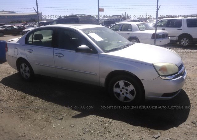 Inventory #215092487 2005 Chevrolet MALIBU