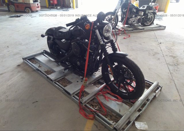 Inventory #543367773 2016 Harley-davidson XL883