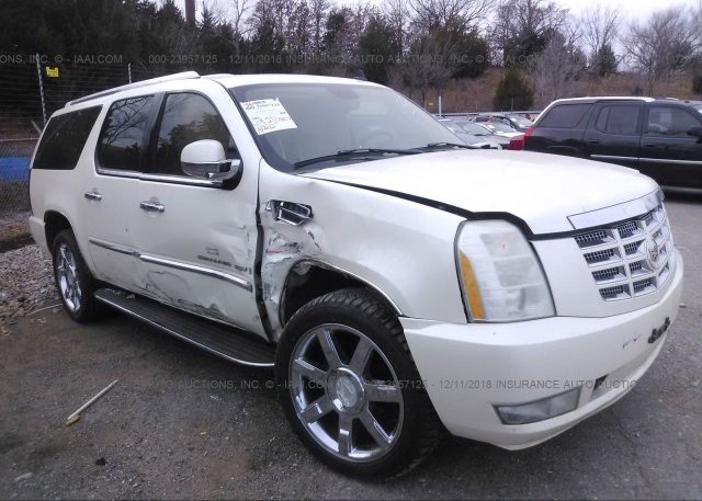 Inventory #985820659 2007 Cadillac ESCALADE