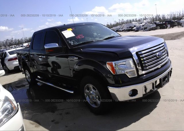 Inventory #900034381 2012 FORD F150