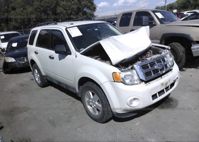Inventory #340153945 2011 FORD ESCAPE