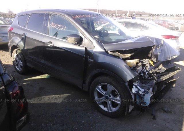 Inventory #871971539 2016 FORD ESCAPE