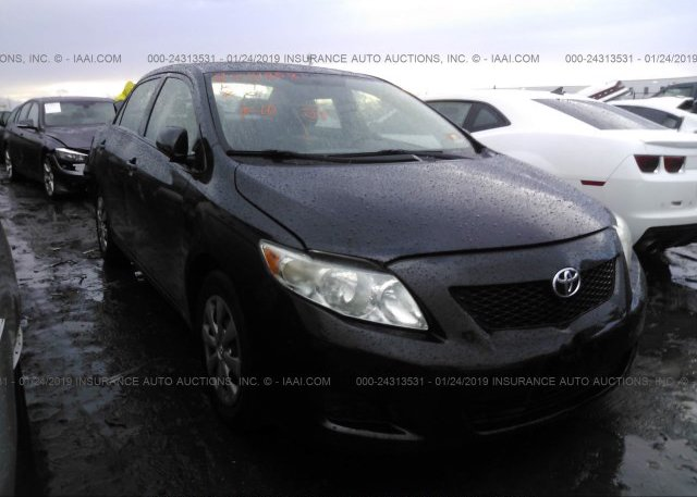 Inventory #644177183 2009 Toyota COROLLA