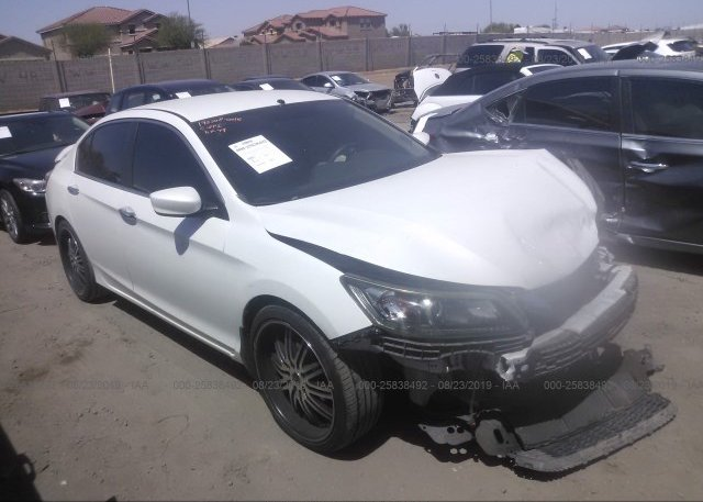 Inventory #770876392 2013 Honda ACCORD