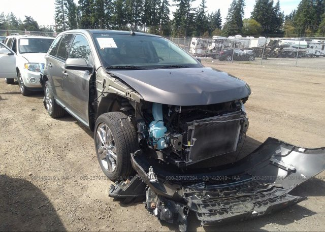 Inventory #885498052 2014 FORD EDGE