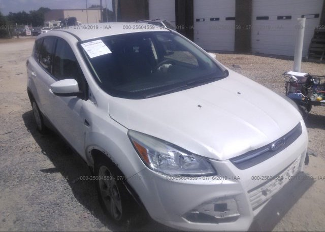 Inventory #469902349 2013 FORD ESCAPE