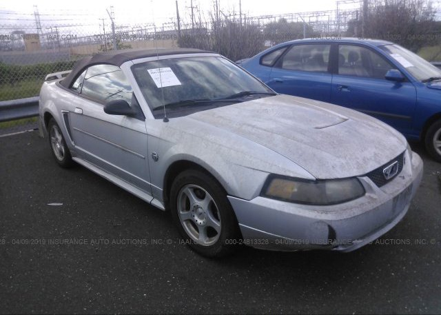 Inventory #885067436 2004 FORD MUSTANG