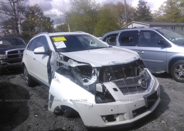 Inventory #548537684 2011 Cadillac SRX