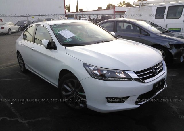 Inventory #353712680 2013 Honda ACCORD