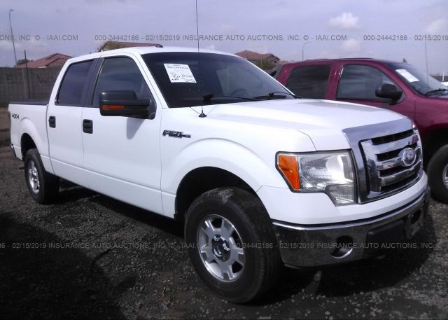 Inventory #653390402 2009 FORD F150