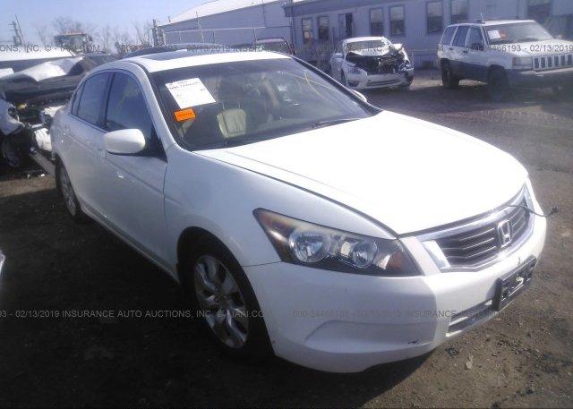 Inventory #392685043 2010 Honda ACCORD