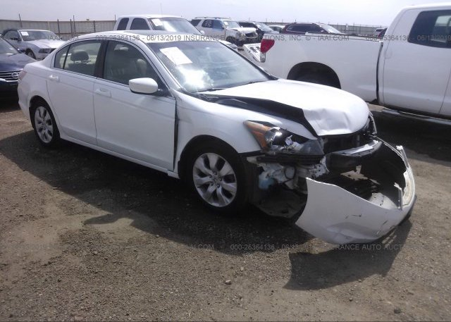 Inventory #395259862 2009 Honda ACCORD