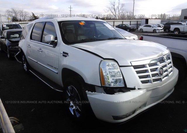 Inventory #917282817 2007 Cadillac ESCALADE