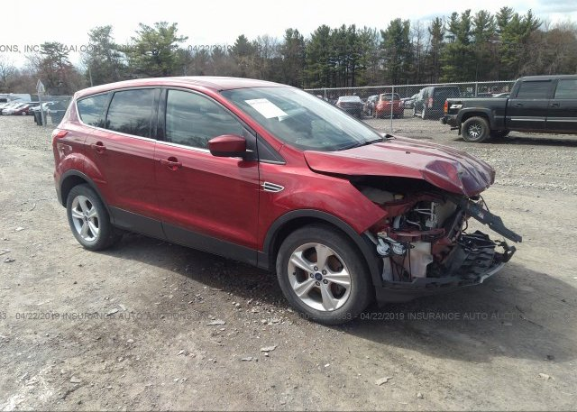 Inventory #571329303 2015 FORD ESCAPE