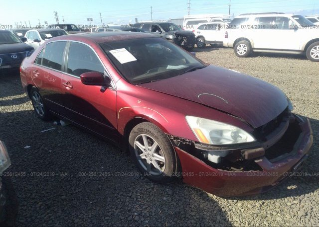 Inventory #793581881 2004 Honda ACCORD