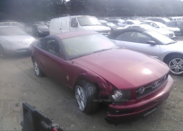 Inventory #732721167 2007 FORD MUSTANG