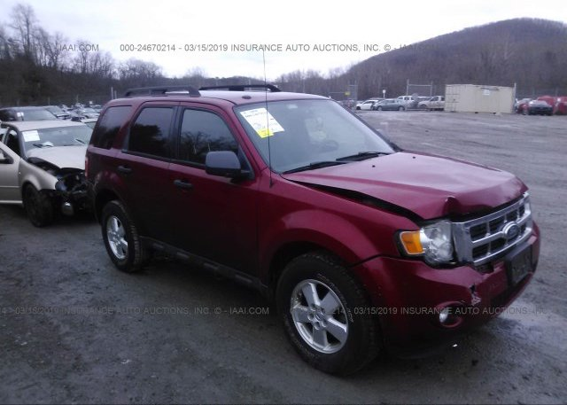 Inventory #412264020 2010 FORD ESCAPE