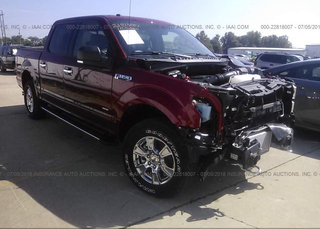 Inventory #511824356 2017 FORD F150