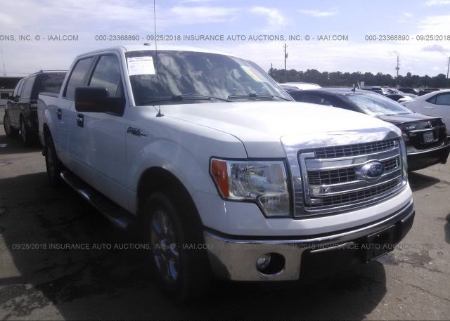 Inventory #972198423 2013 FORD F150