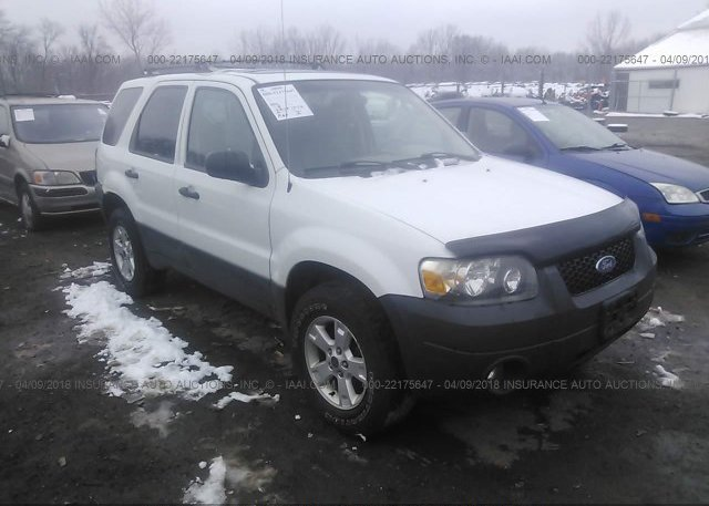 Inventory #888332843 2005 FORD ESCAPE