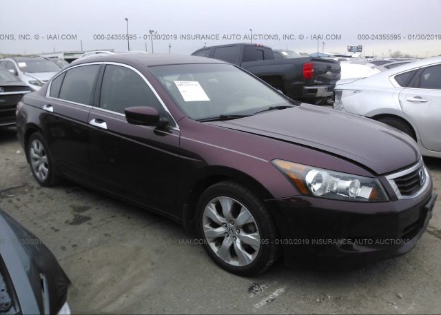 Inventory #729797992 2008 Honda ACCORD