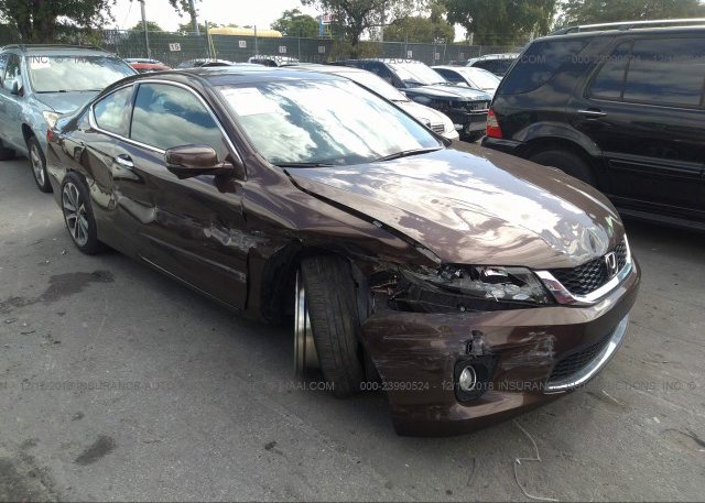 Inventory #877203841 2013 Honda ACCORD