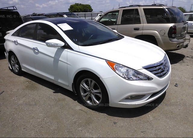 Inventory #611408020 2013 Hyundai SONATA