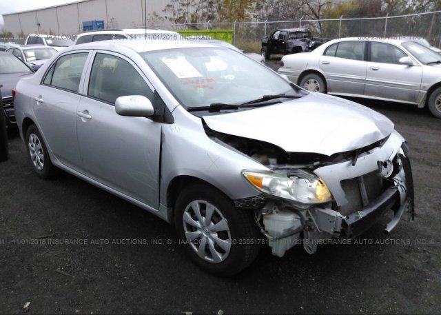 Inventory #983365654 2010 Toyota COROLLA