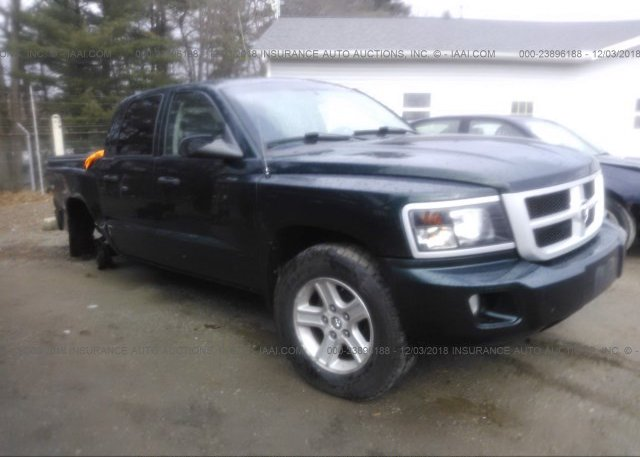 Inventory #939554186 2011 Dodge DAKOTA