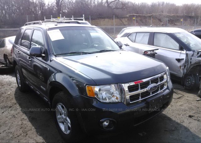 Inventory #980080540 2008 FORD ESCAPE