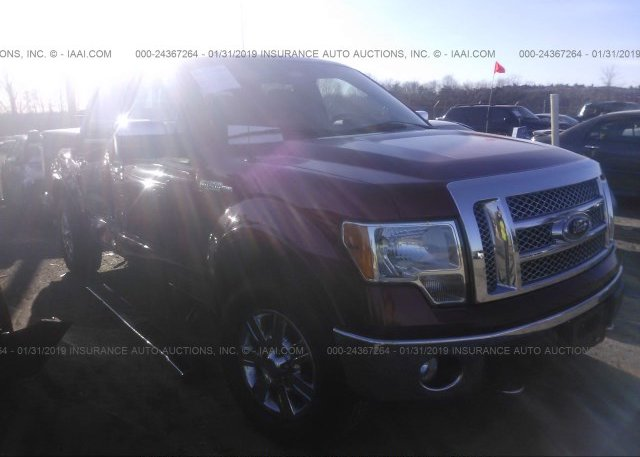 Inventory #440327367 2010 FORD F150