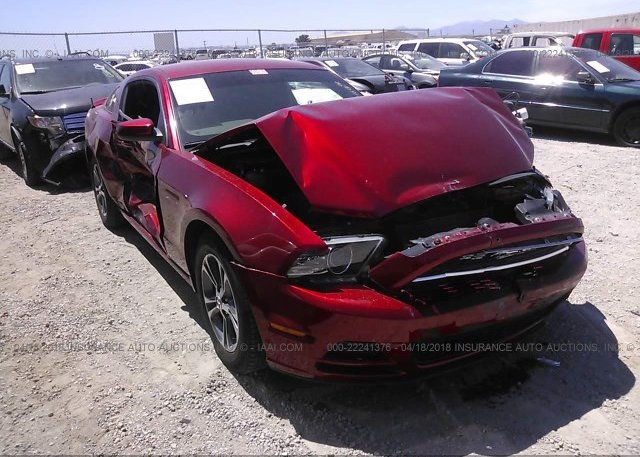 Inventory #503057067 2014 FORD MUSTANG