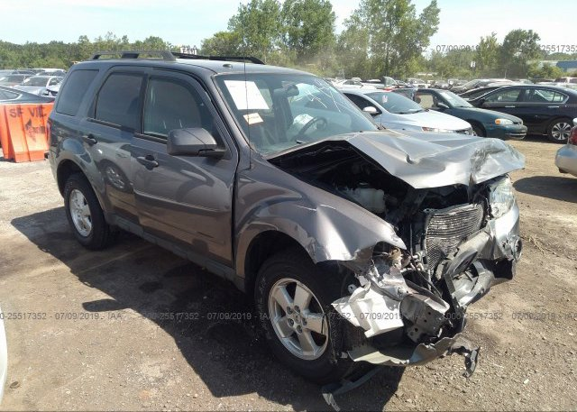 Inventory #791844075 2011 FORD ESCAPE
