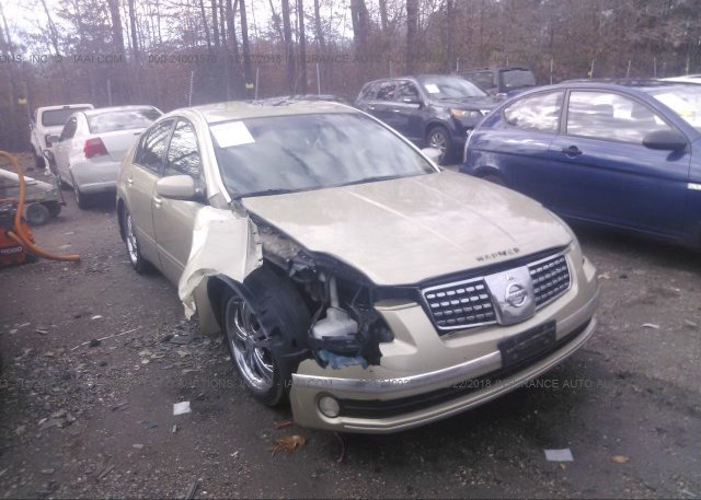 Inventory #529216003 2004 Nissan MAXIMA