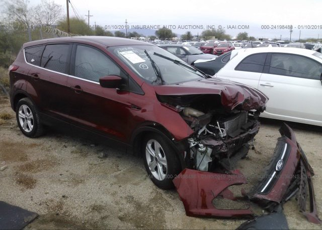 Inventory #232048600 2016 FORD ESCAPE