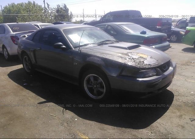 Inventory #802334208 2003 FORD MUSTANG