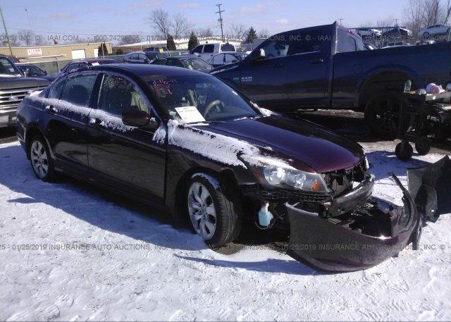 Inventory #531512985 2008 Honda ACCORD