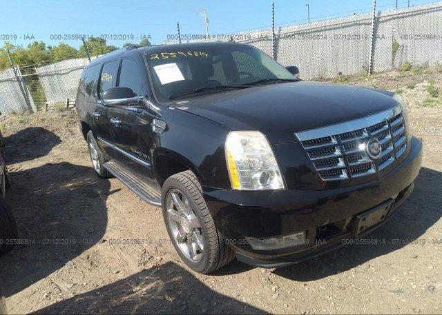 Inventory #571832802 2007 Cadillac ESCALADE
