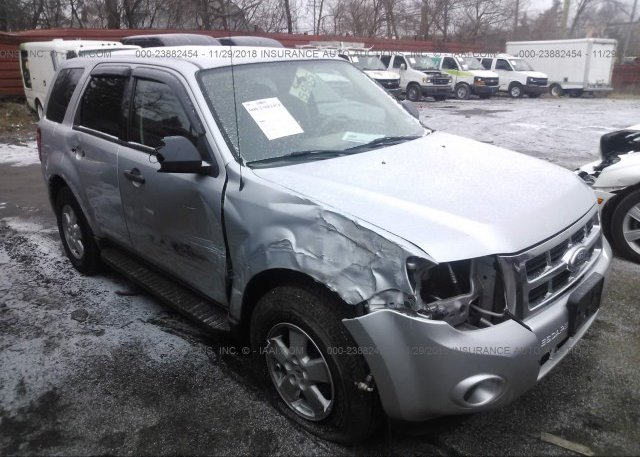 Inventory #533392880 2010 FORD ESCAPE
