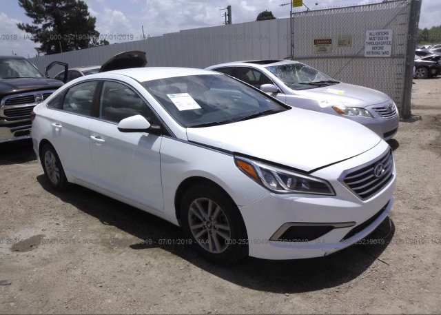 Inventory #495842956 2016 Hyundai SONATA