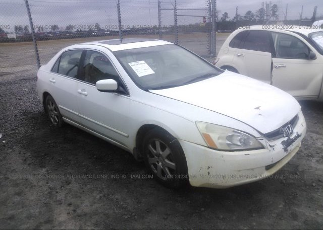Inventory #839041948 2005 Honda ACCORD