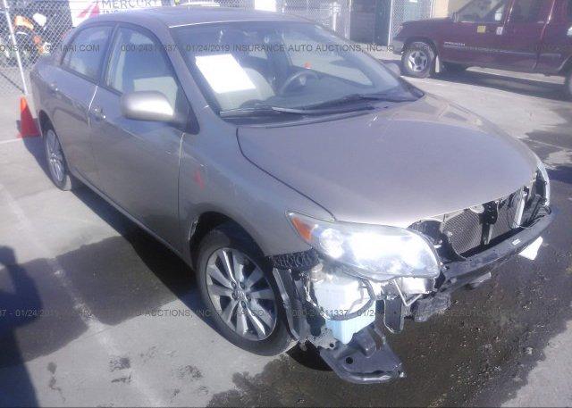 Inventory #437608162 2009 Toyota COROLLA