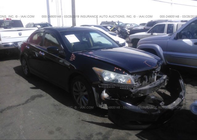 Inventory #501763645 2011 Honda ACCORD